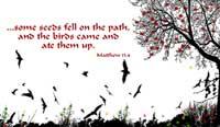 Matt 13:4